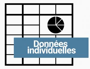 Logo excel données individuelles (grisé)
